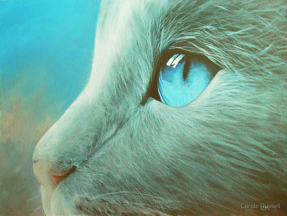 Baby got blue eyes  by Carole Russell