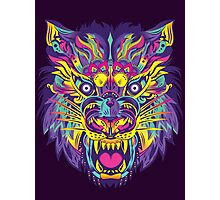 Rainbow Tiger Photographic Print