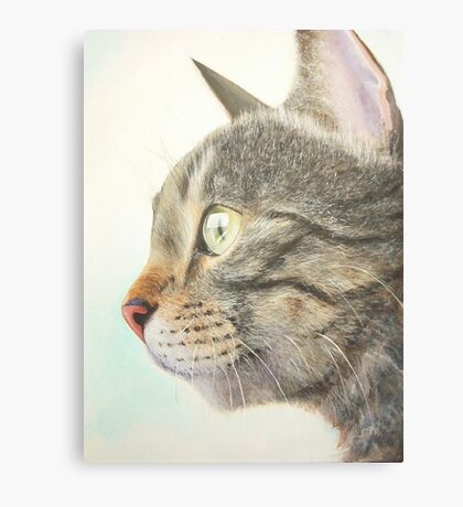 Tabby portrait Canvas Print