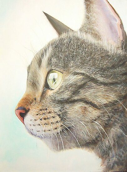 Tabby portrait by Carole Russell