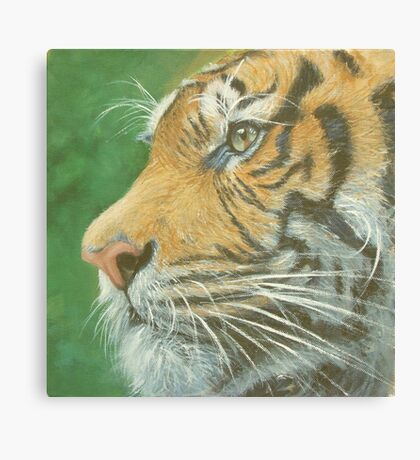 Profile Canvas Print