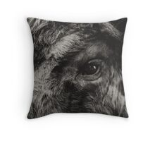 Bisons look Throw Pillow