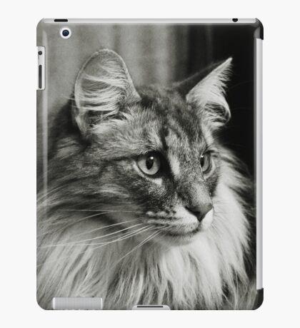 Maine Coon Mono iPad Case iPad Case/Skin