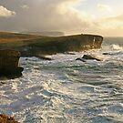 Wild Ocean by RoystonVasey