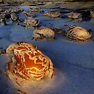 Things That Go Bump In The Night Bisti/De-Na-Zin Wilderness by Bob Christopher