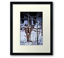 First Snow of the Winter Framed Print