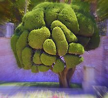 Topiary  by dipperdoo