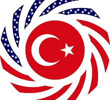 Turkish American Multinational Patriot Flag Series by Carbon-Fibre Media