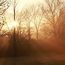 One Golden Morning ~ by Renee Blake