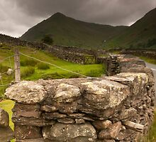 Lake District Cumbria by DIANE  FIFIELD