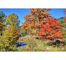 Texas Hill Country Autumn Photographic Print