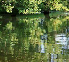 Rutland Water Reflection by KUJO-Photo