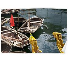 Vietnamese dragon figureheads and bamboo Basket boats, Brest 2008 Maritime Festival, France Poster