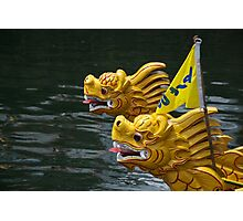 Vietnamese dragon figureheads and bamboo Basket boats, Brest 2008 Maritime Festival, France Photographic Print