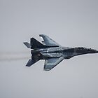 Mig-29 Fulcrum by Cliff Williams