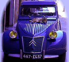 CATS LOVE CITROEN 2CV DEUX CHEVEUX CAR - blue by KenAlex