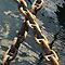 Crossed rusty ship chains in harbour, Brest, France by silverportpics