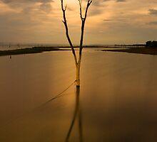 Kariba Moonrise by Adrian Park