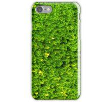 Green Boom iPhone Case/Skin