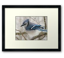 A Blue Gray Day Framed Print