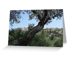 Acropolis and olives Greeting Card