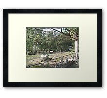 Dodgems/bumper cars, Chernobyl exclusion zone Framed Print