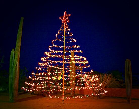 An Arizona Christmas by CarolM