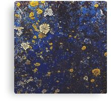 Lichens Growing On An Old Ford Ranger 2 Canvas Print