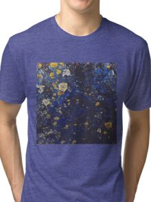 Lichens Growing On An Old Ford Ranger 2 Tri-blend T-Shirt