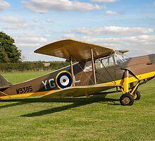 DH.87B Hornet Moth W9385/YG-3 G-ADND by Colin Smedley