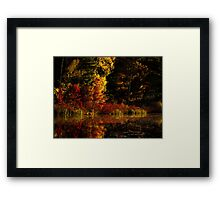 Autumn At It's Finest Framed Print