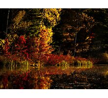 Autumn At It's Finest Photographic Print