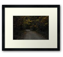Nichols Arboretum in the Fall Framed Print