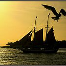 Into the Sunset at Key West by Mikell Herrick