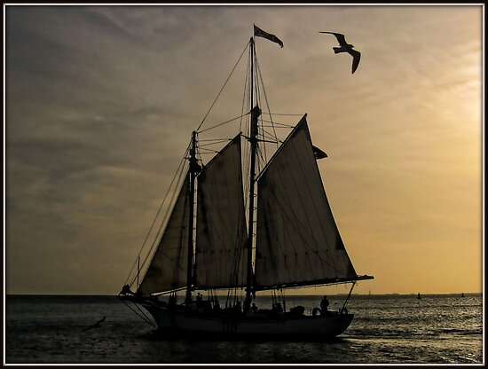 Key West Sunset Sail by Mikell Herrick