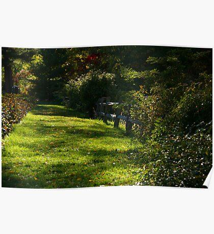 Nichols Arboretum Fence Poster