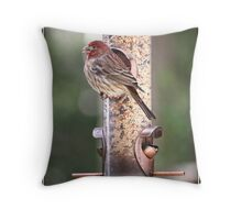 One Fat House Finch Throw Pillow