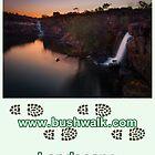 Bushwalk Australia Landscape Calendar 2013 by Bushwalk