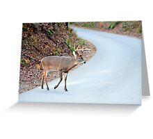 The Strutter Greeting Card