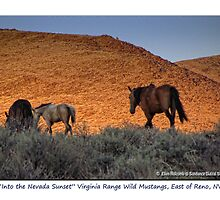 """Into the Nevada Sunset"" small band of Virginia Range, Nevada by Ellen  Holcomb"