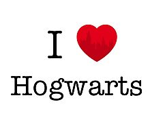 I love Hogwarts Photographic Print