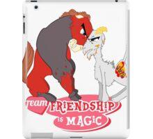 Team Friendship iPad Case/Skin