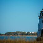 Cockspur Island Lighthouse by Georgia Walters