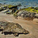 The Rocks by Warren. A. Williams
