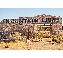 Mountain Lions Photographic Print