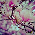 Blossoming by Richard Rusz