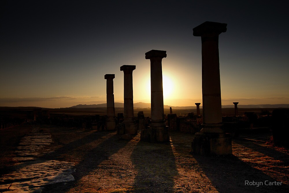 Volubilis at Sunset by Robyn Carter
