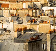 rooftops of Paris building in France  by hpostant