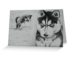Husky puppies in the snow Greeting Card