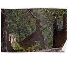 Ruins At Joadja Ghost Town Poster